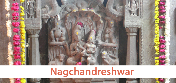 Nag Panchami at Nagchandreshwar